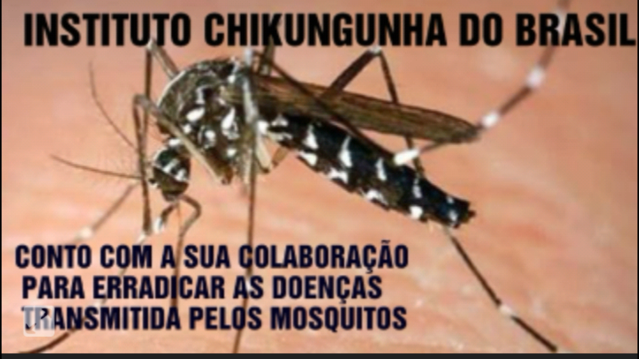 Vaquinha Online -Outros - Foto de capa do INSTITUTO CHIKUNGUNHA DO BRASIL